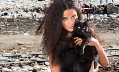 Divlja mačka – 31. epizoda